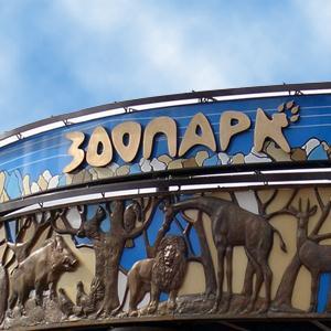 Зоопарки Палеха